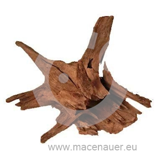 MACENAUER Kořen Jungle Root L, 40-60 cm