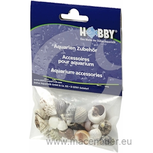 HOBBY mušle Sea Shells Set S, 20ks v balení