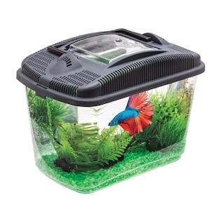 AQUAEL Betta kit akvarijní set, 3 l
