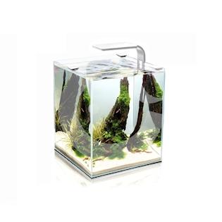AQUAEL Shrimp Smart akvarijní set, bílá, 10 l